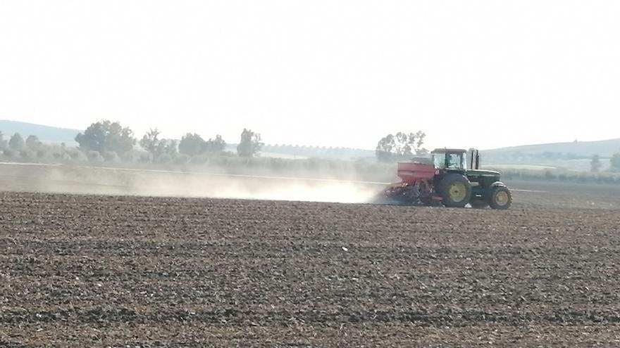 """El sector agrario andaluz defiende """"la unidad de acción"""" para """"vigilar al detalle"""" el desarrollo del acuerdo de la PAC"""