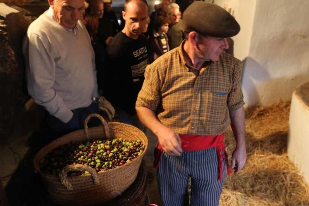 Fiesta de s´Oli en Forada