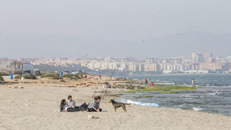 El PSOE denuncia que la ineficacia de Barcala deja sin servicios la playa de mascotas de Agua Amarga