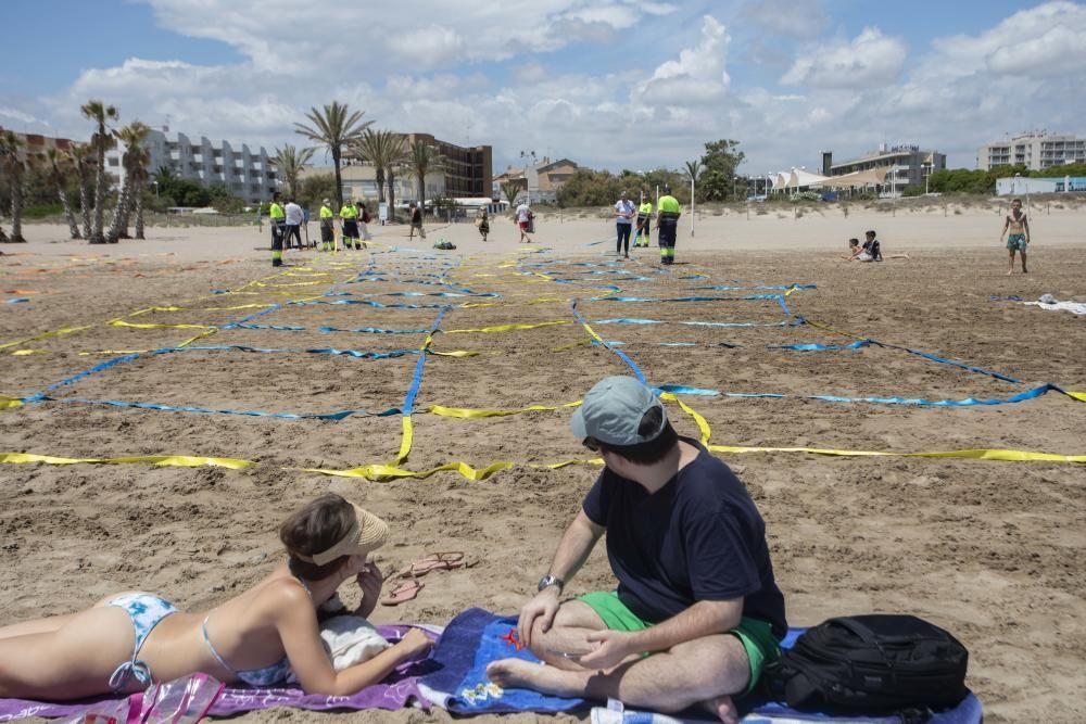 Canet inicia la parcelación de su playa a modo de prueba