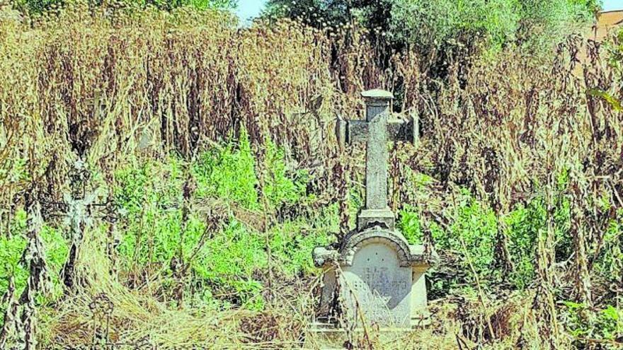 Vecinos de Villabrázaro piden recuperar el viejo cementerio y habilitar un jardín