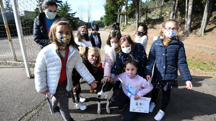Lucha contra el abandono animal desde el colegio