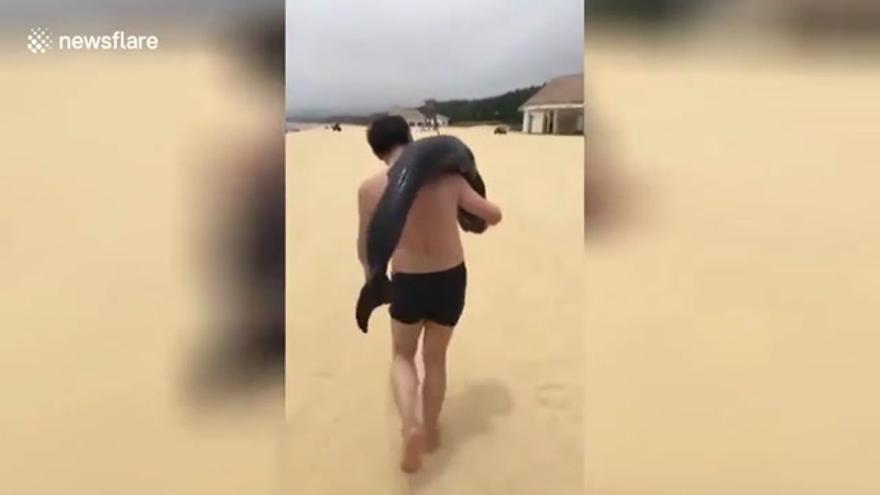 La policía china busca a un turista que se llevó un delfín al hombro