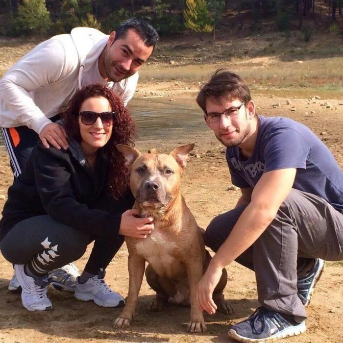 Zeus y su familia