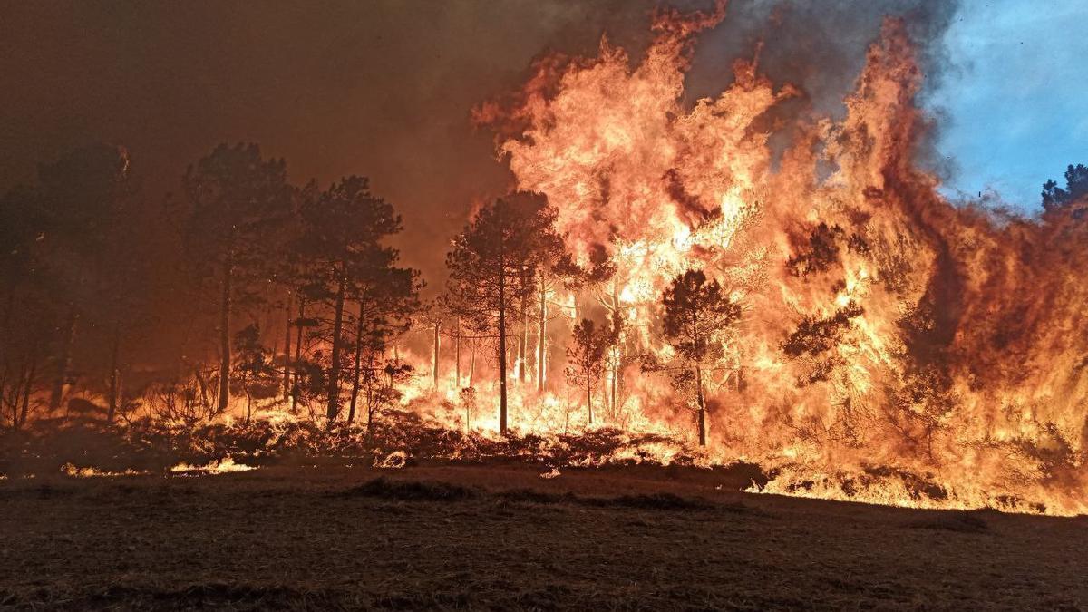 Les flames de l'incendi que afecta l'Anoia i la Conca de Barberà