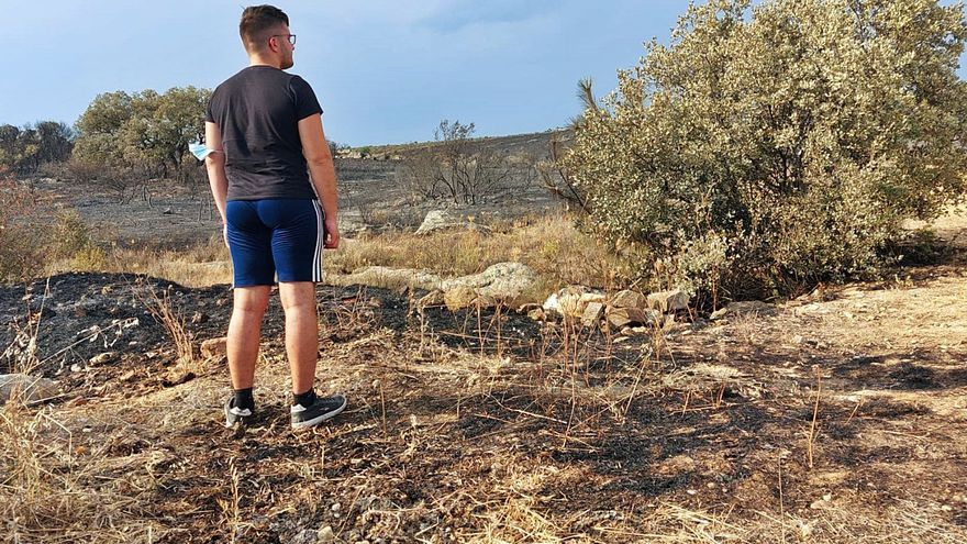 Controlado el incendio de Carracedo tras arrasar más de 150 hectáreas