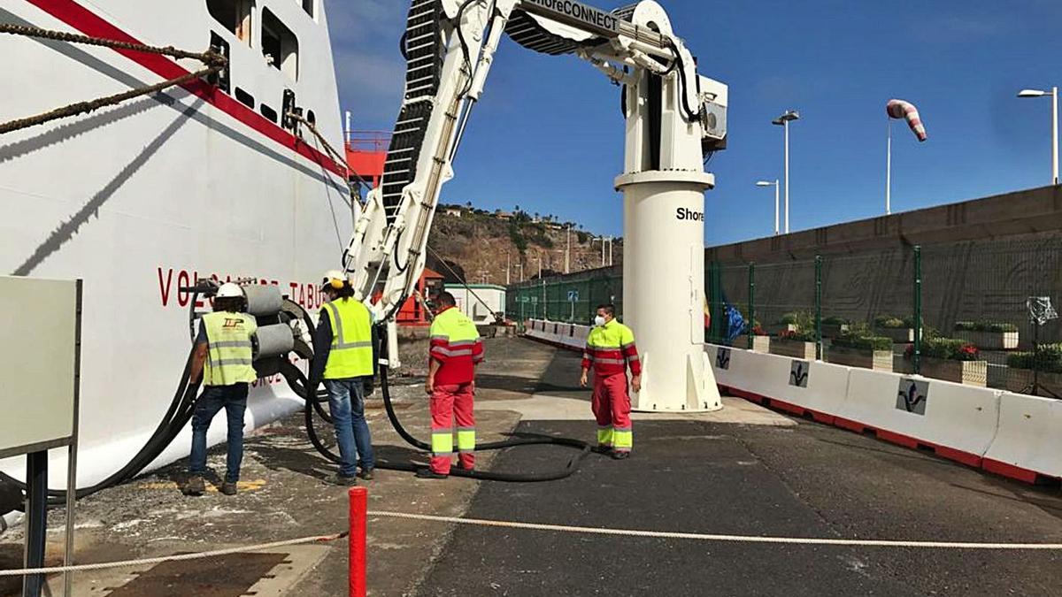 Un momento de la operativa realizada puerto de San Sebastián de La Gomera.     E.D.