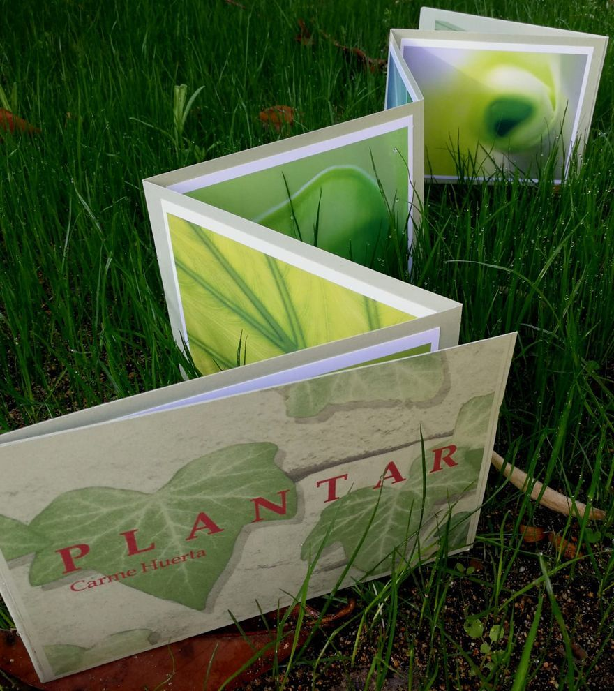 Carme Huerta presenta el seu foto-llibre «Plantar» a Barcelona