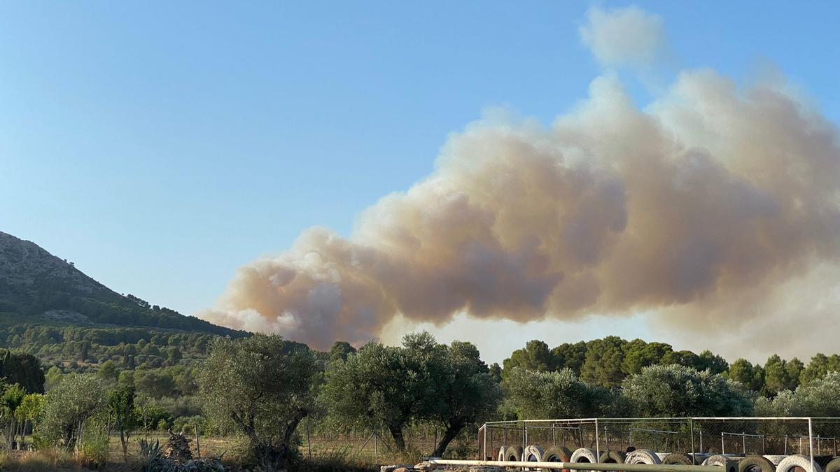 Columna de fum de l'incendi al massís del Montgrí