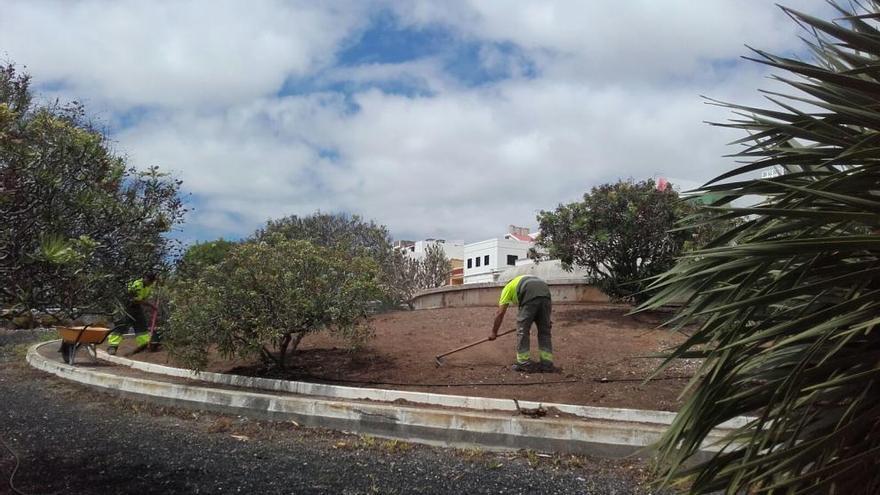 El Cabildo acondiciona la zona verde de la carretera del centro a su paso por El Secadero