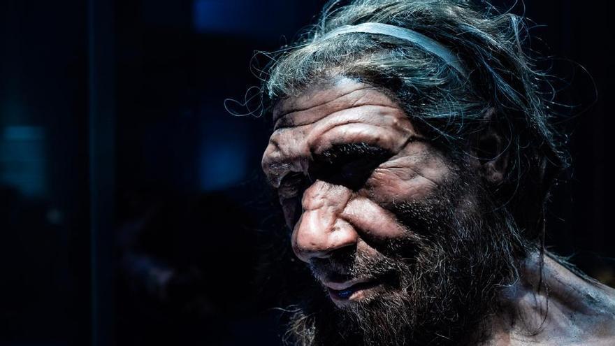 Los neandertales hablaban y oían como nosotros