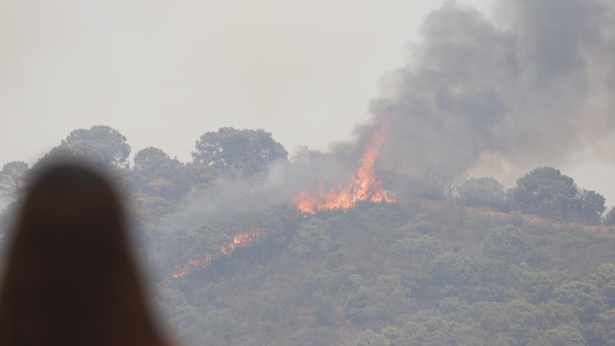 Imagen del incendio forestal provocado en Sierra Bermeja