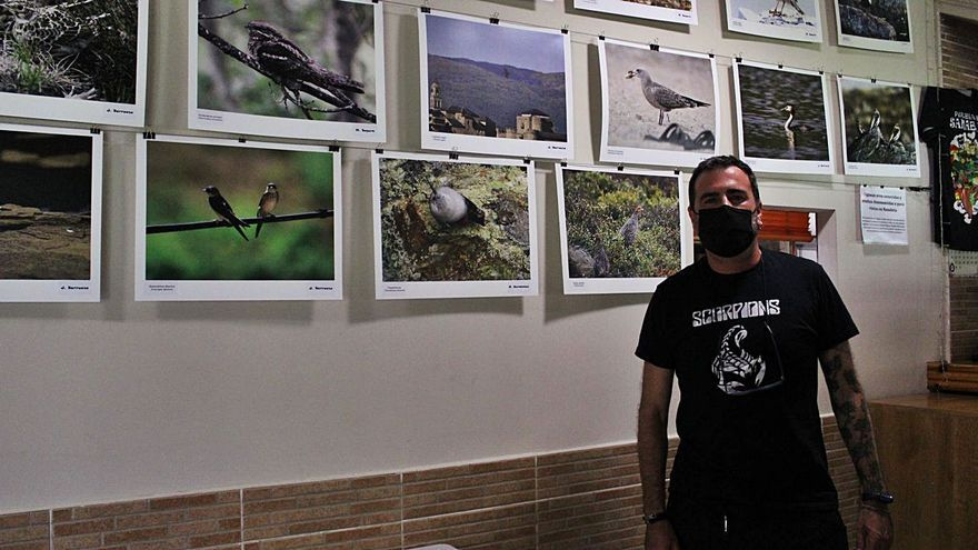 Las aves de Sanabria veranean en el chiringuito del Tera