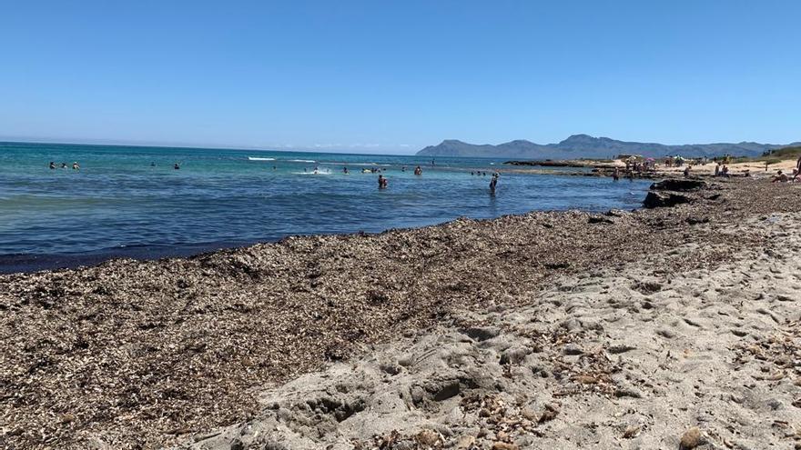 Strände von Santa Margalida bekommen endlich einen Strand-Service