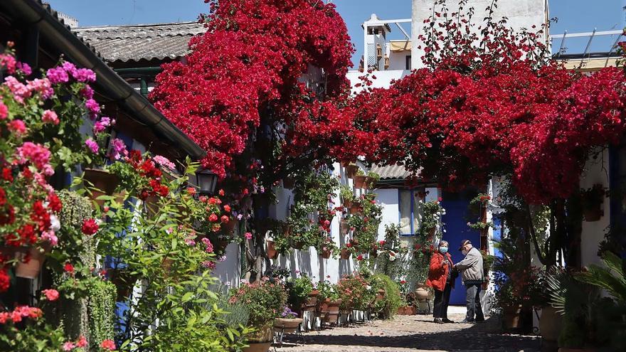 Patios de Córdoba 2021: Las casas de vecinos, una rareza que atrae a los visitantes