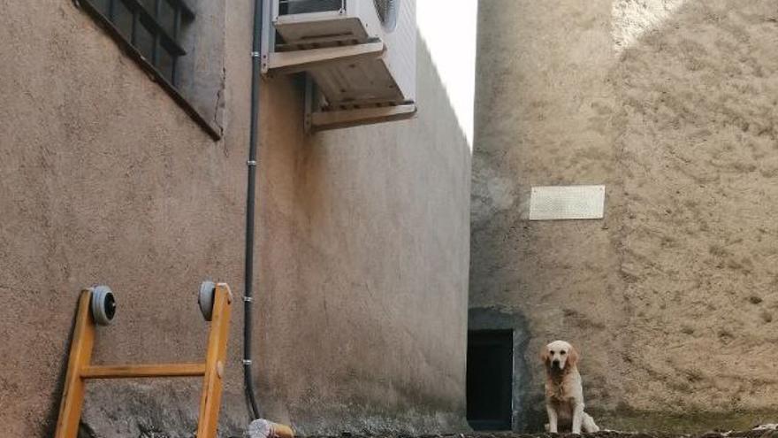 Rescaten un gos enfilat en una teulada a Solsona