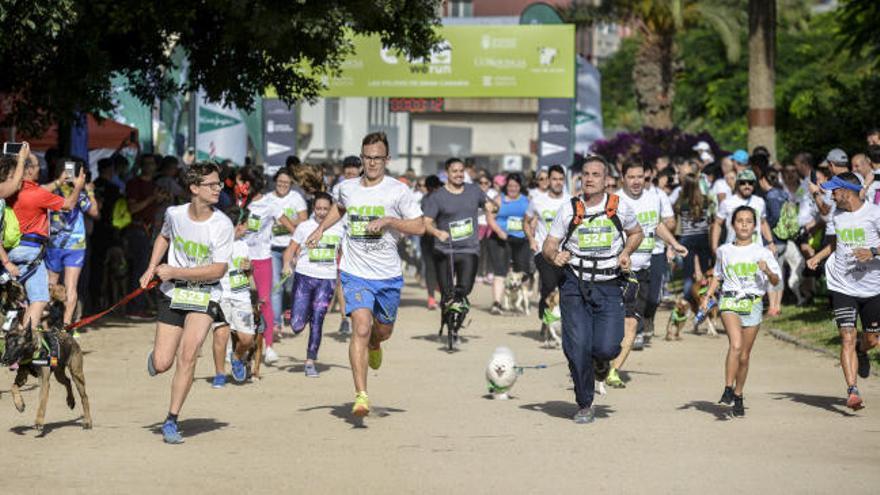Resumen de la carrera de mascotas Can We Run LPGC 2018 en el Parque Romano de Las Palmas de Gran Canaria