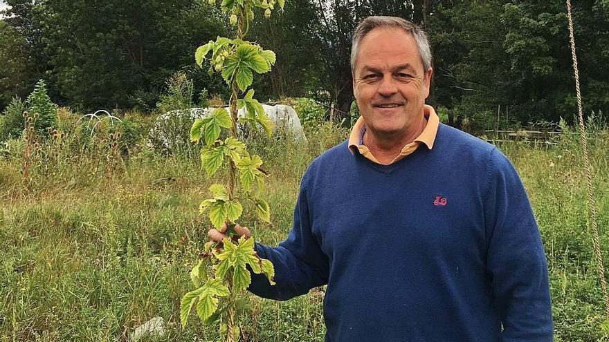 Un empresari  porta llúpol europeu a Llívia per fer cervesa
