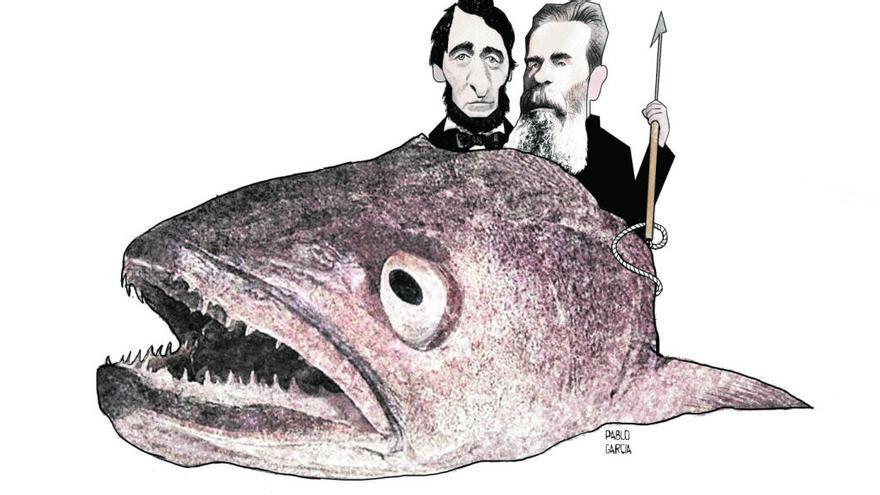 ¿Quién come las cabezas de bacalao?