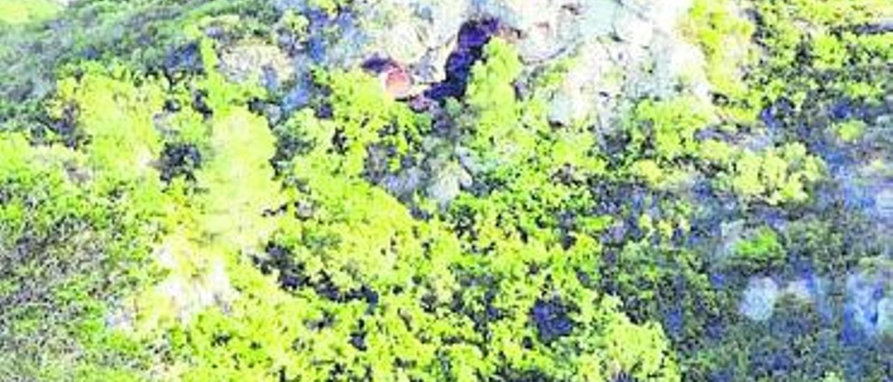 La Cova de l'Àguila en el paraje de la Serra de Picassent.   E.M.