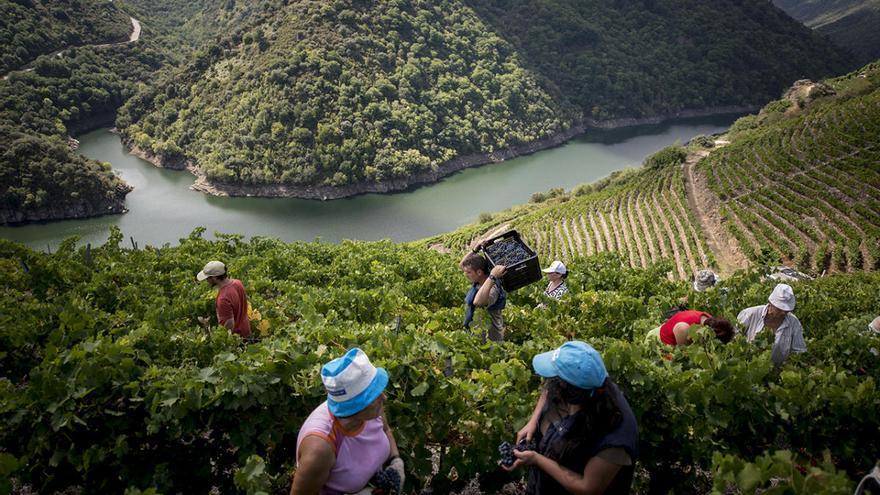 Impulso exprés al turismo autóctono