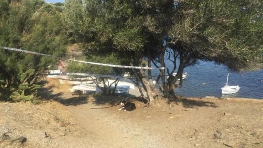 Deixen un gos 12 hores lligat a un arbre a Cadaqués