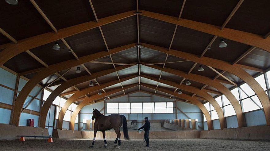 Vista general del picadero del club Equus Duri con uno de los caballos ejercitándose.
