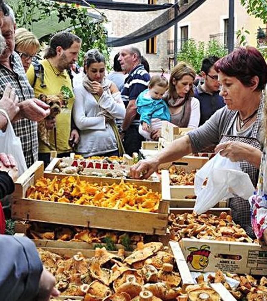 Plans a Girona per aquest dimarts 12 d'octubre