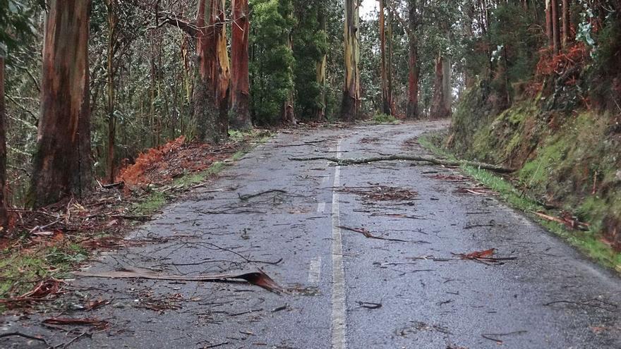 Ponen en marcha un proyecto para arreglar los problemas de la carretera del Chedón