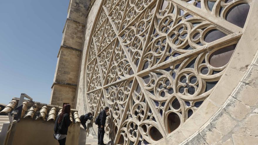 Lo que debes saber antes de subir a las terrazas de la Catedral de Mallorca