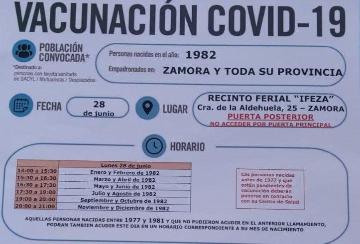 Cartel oficial 1982 Zamora.