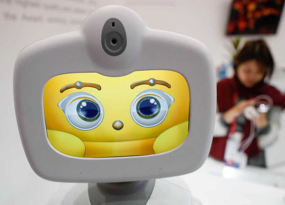 Robelf, a domestic robot with facial and voice ...