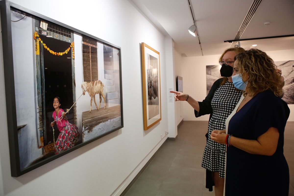 El arte contemporáneo y la sensibilidad animalista se dan cita en la exposición 'Animalario'
