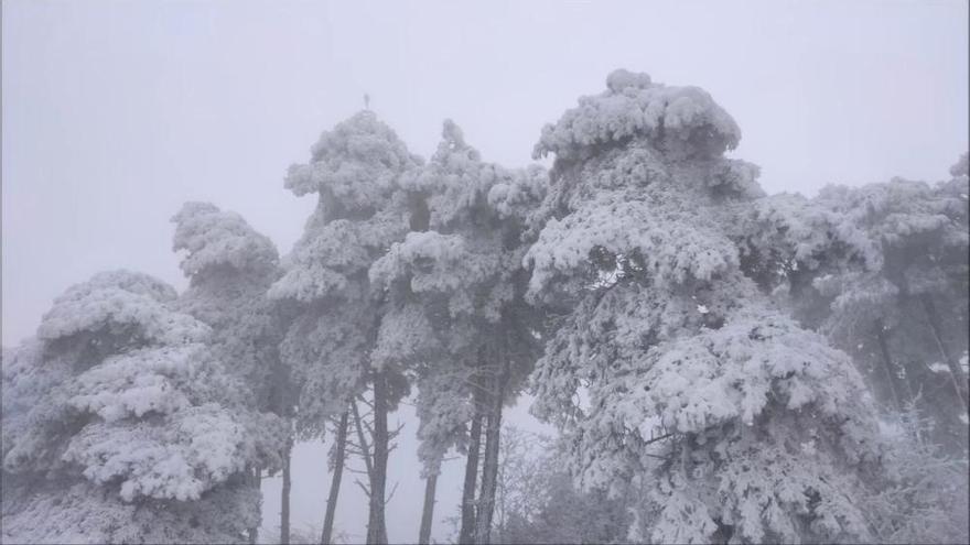 El termòmetre baixa fins als -17,7ºC a Das i els -9,5ºC a Puigcerdà
