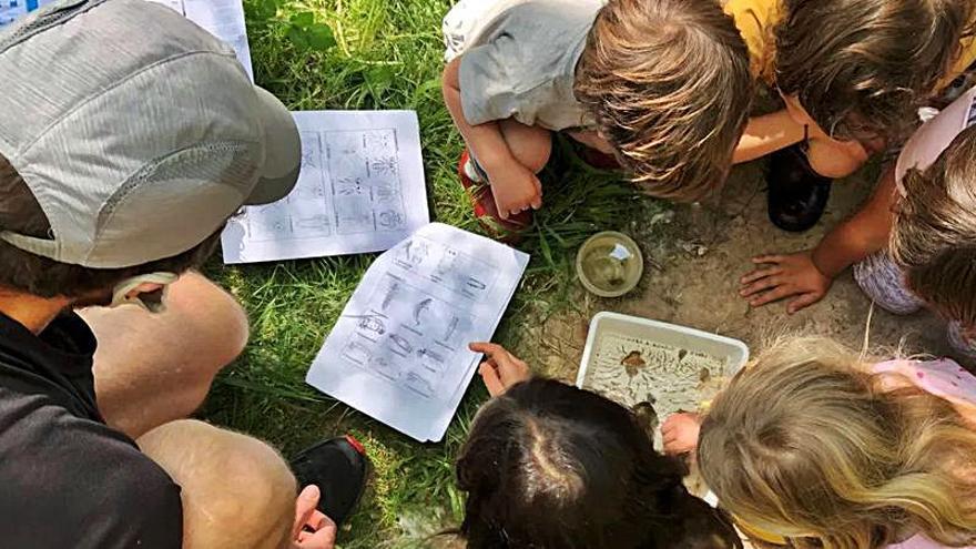 Èxit de la jornada de descoberta del patrimoni natural i neteja del riu Anoia