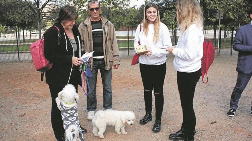 Castelló sanciona a 170 dueños de animales por incumplir las normas