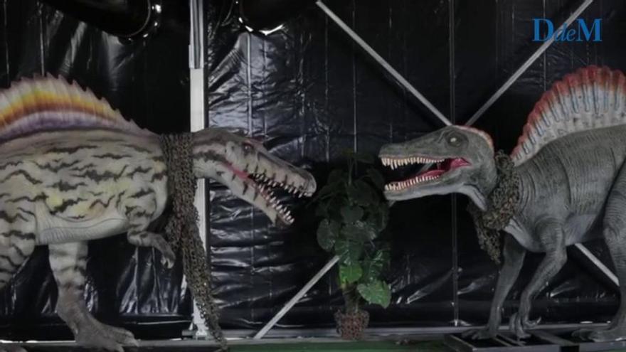 Lebensgroße Dinos bevölkern den Stadtrand von Palma