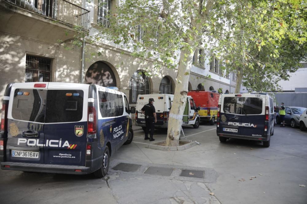 Los detenidos de la red de carteristas, pasan a disposición judicial