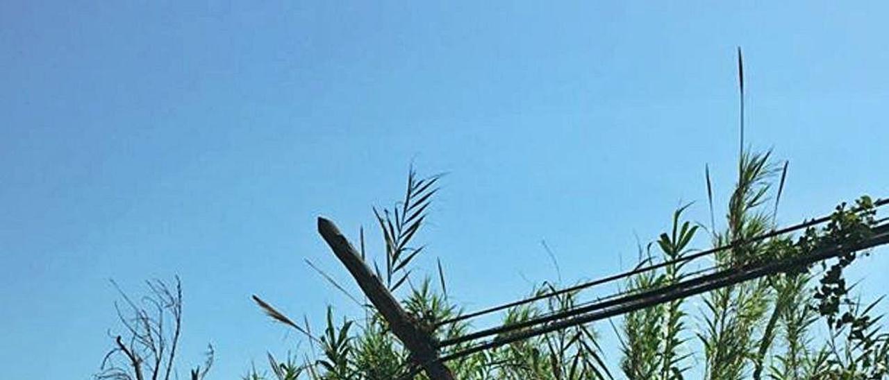 Los postes han acabado definitivamente derribados.