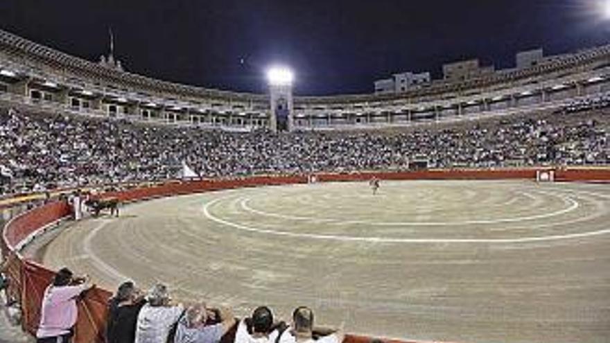 Kippt die Stadt Palma den Stierkampf kommende Woche?