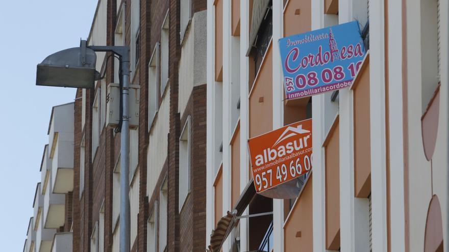 La oferta de habitaciones en piso compartido en Córdoba crece un 21% en el último año