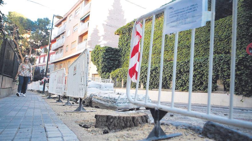El Ayuntamiento de Zaragoza ha talado más de 2.300 árboles en 15 meses