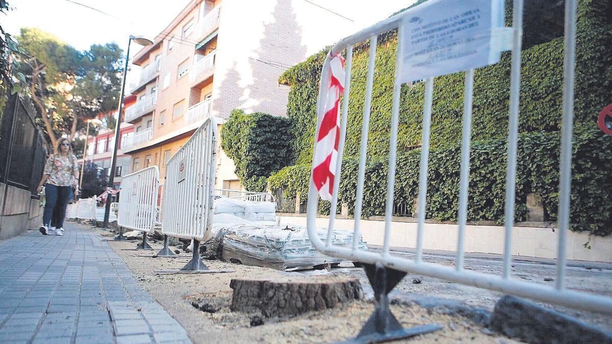 Un árbol talado durante las obras en una calle de Zaragoza.