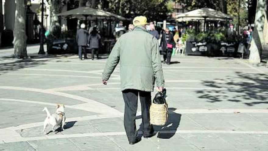 Els gossos i la Ciutat
