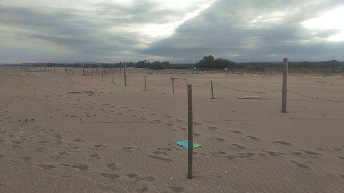 Les tanques trencades a la platja de Can Comes difosa pel Parc Natural.