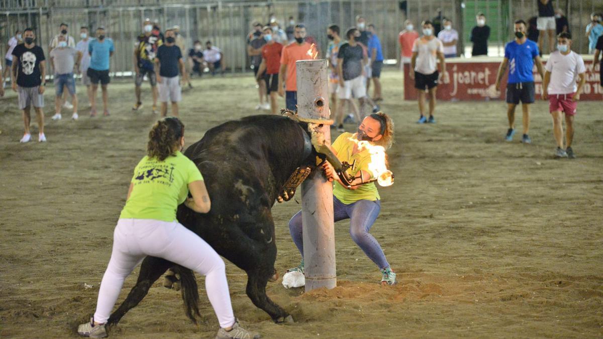 Imagen de un toro embolado en la actual Pascua Taurina que se está celebrando en Onda.