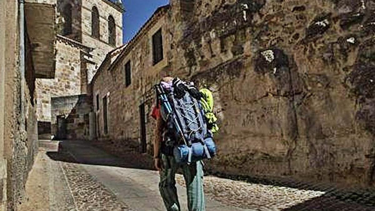 Un peregrino camina en dirección al albergue de peregrinos de Zamora. | Emilio Fraile