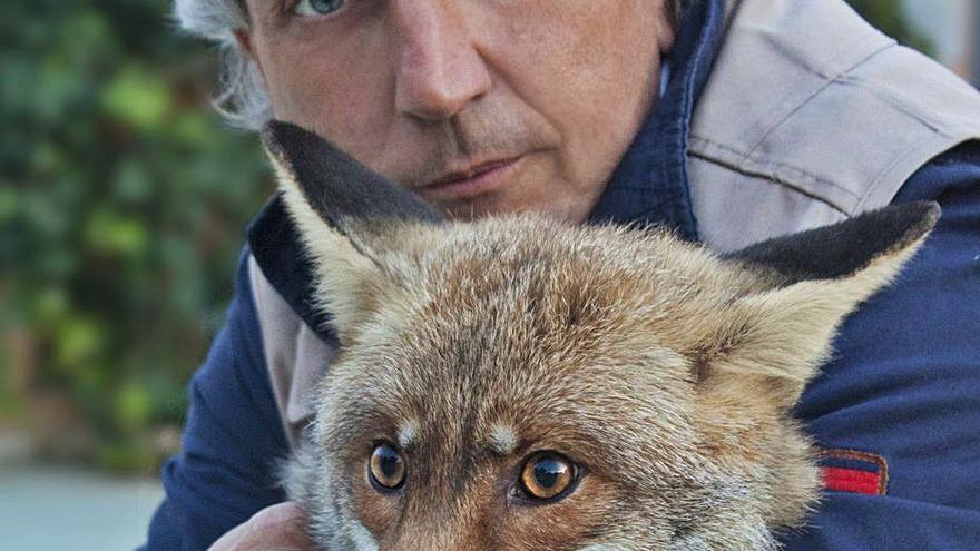 45 millones de animales mueren de miedo cada año