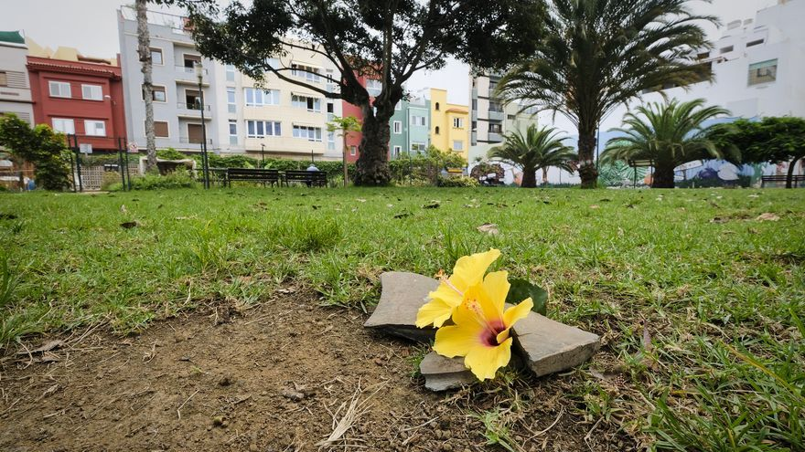 Flores para Miguel Ángel