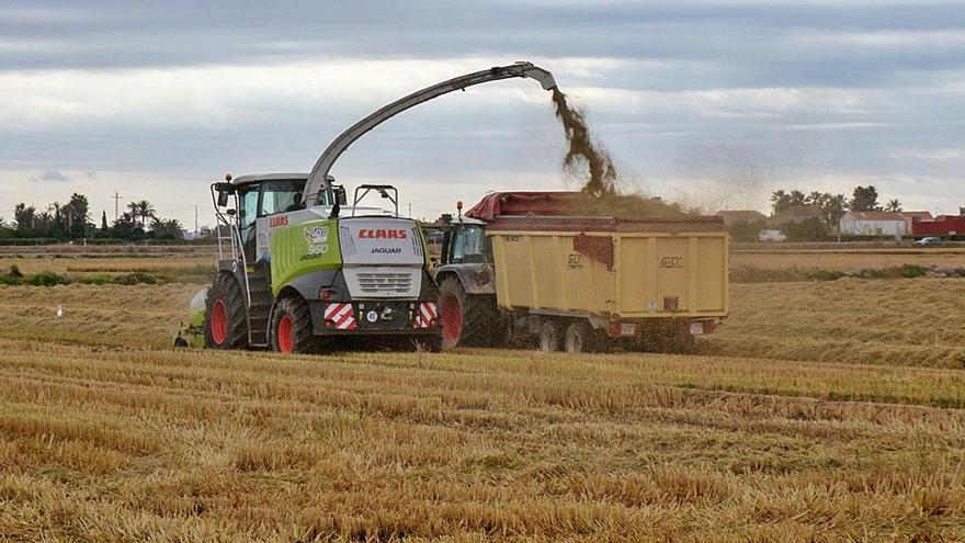 La transformación de la paja en biogás evitará 130.000 toneladas de carbono